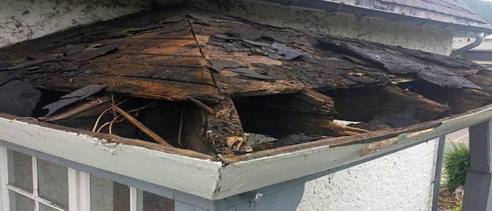Why it's important to have clean gutters